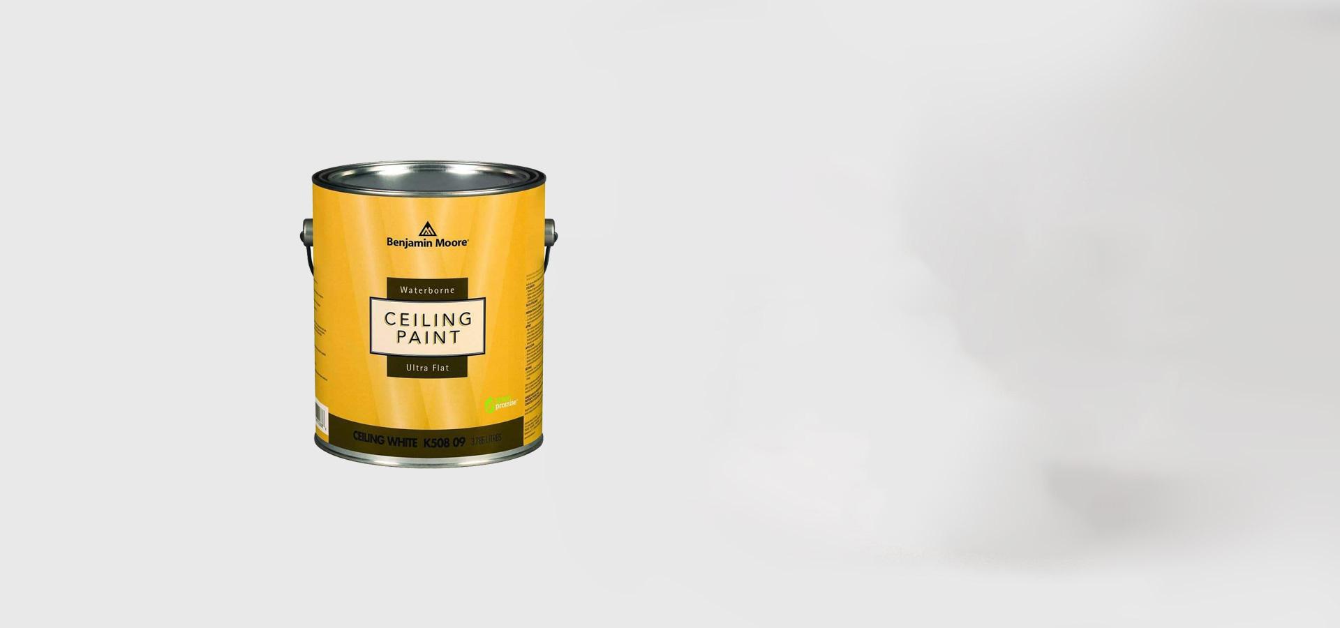 ceiling_paint